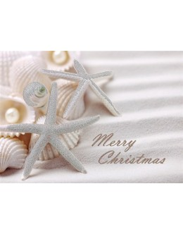 Cards - White Sand Christmas - 66169